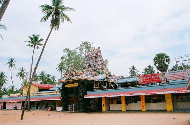 pilgrims in trivandrum, attukal temple