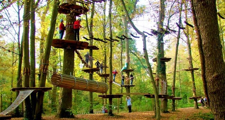 idukki park, fun forest adventure park