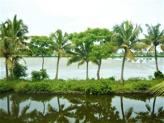 tourist places in kottayam, kallara, places to visit in kerala