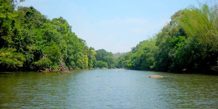 tourist place in Wayanad, places to visit in kerala, kuruva island