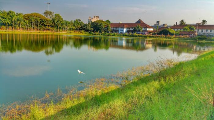 backwaters in kozhikode, places to visit in Kerala, mananchira lake