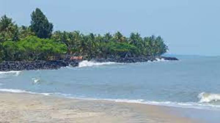 beaches in ernakulam, places to visit in kerala, munambam beach