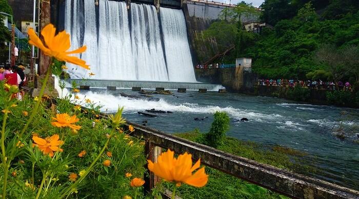 dams in thrissur, peechi dam, places to visit in kerala