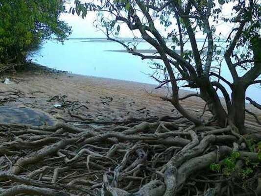 wildlife sanctuary inkasaragod, places to visit in kerala, thalangara children's park