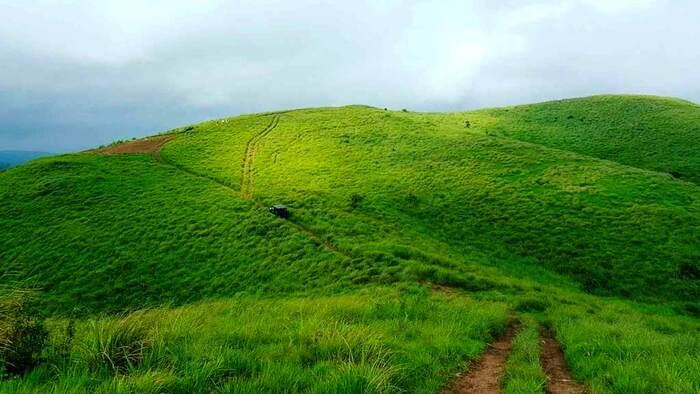 hill station in kottayam, vagamon, tourist places in kottayam