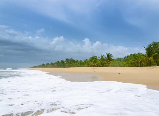 beaches in alappuzha, marari beach
